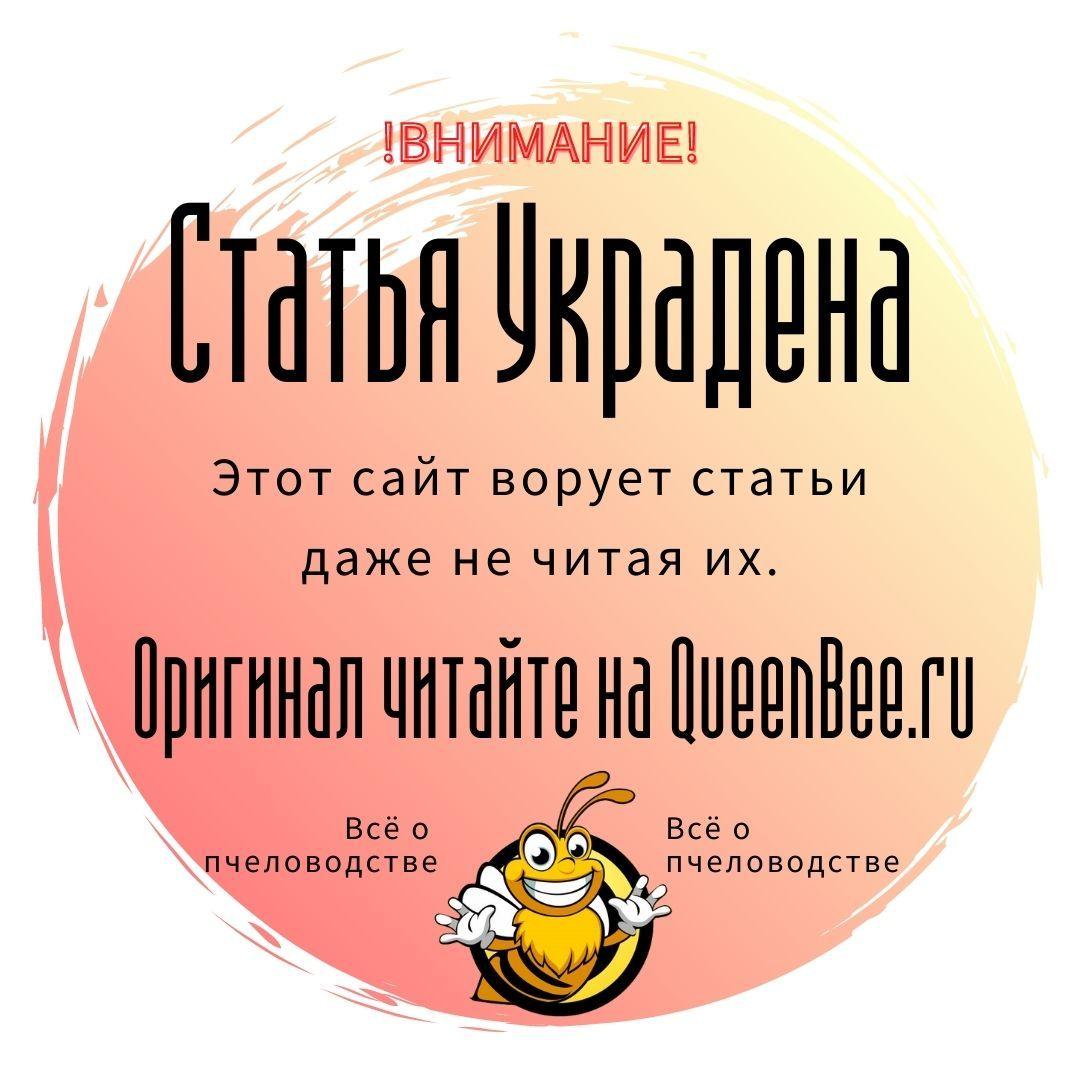Восковая (пчелиная) моль. Большая и малая.