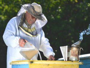 Жидкая подкормка для пчел