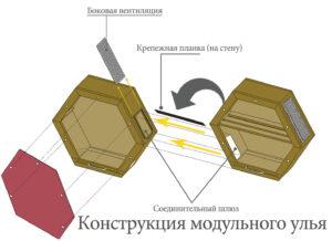 Чертежи модульного прозрачного улья