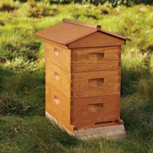 Пчеловодство для начинающих: пчелиный улей
