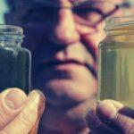 Падевый мед польза для человека