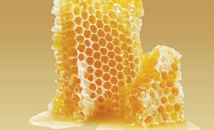 Как есть пчелиные соты и можно ли глотать воск