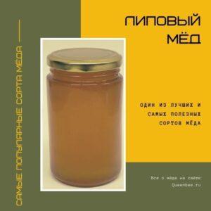 Сорта меда: Липовый мед краткое описание