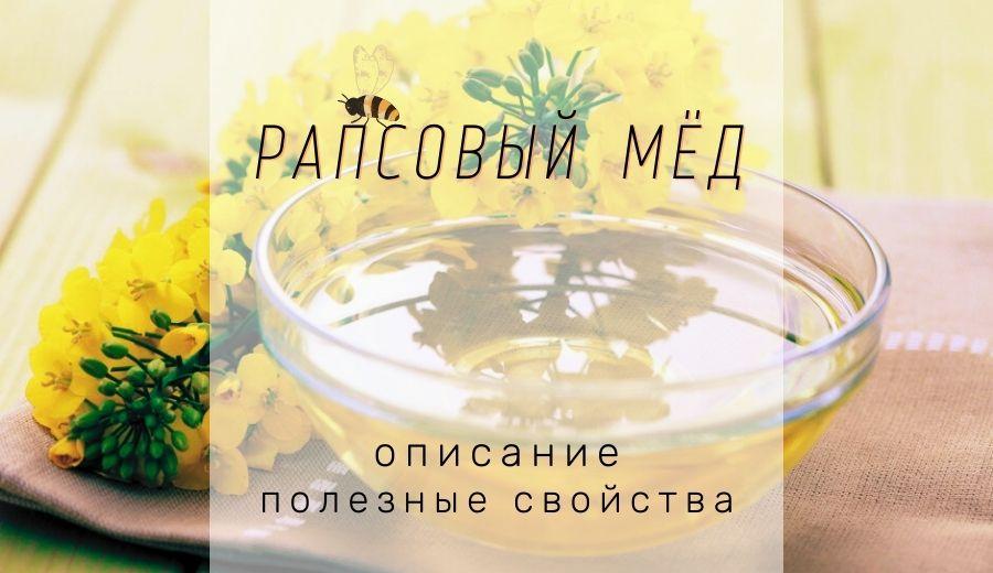 Рапсовый мед: полезные свойства и вред, описание, состав и калорийность
